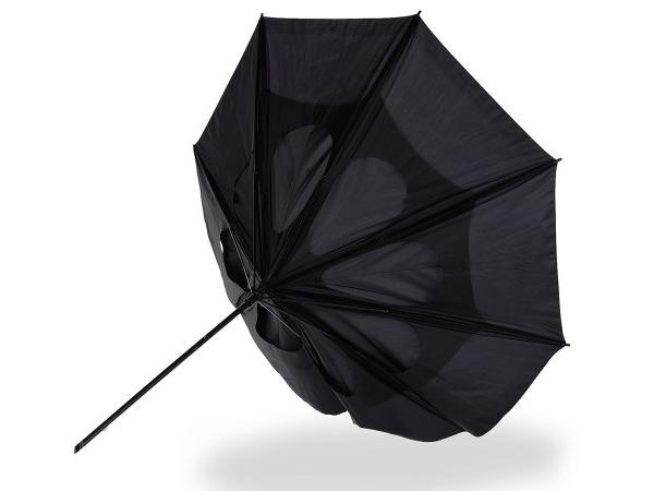 Parapluie Tempête - visuel 2