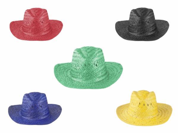 Chapeau de Paille de Couleur