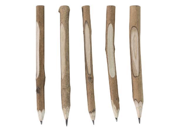 Crayon en Bois en Forme de Branche - visuel 2