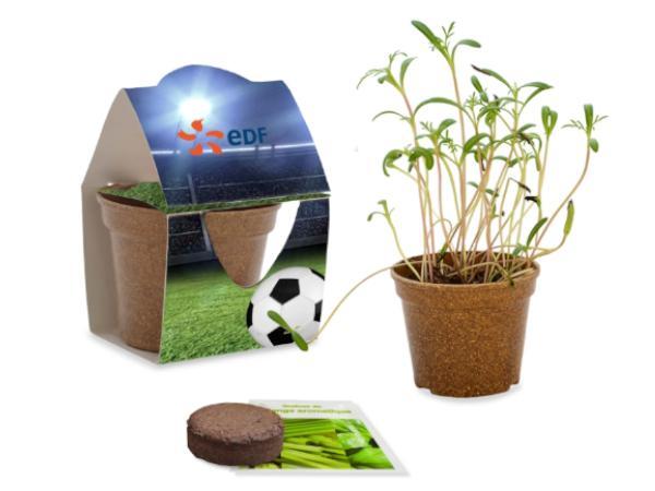 Kit de Jardin Écologique