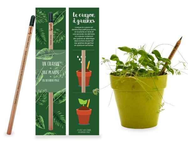 Crayon à Graines Écologiques