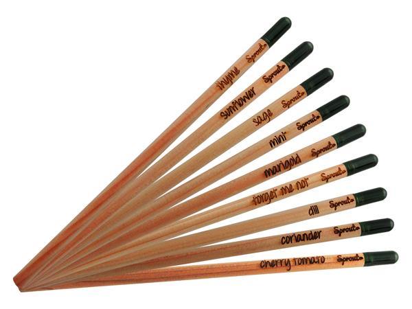Crayon à Graines Écologiques - visuel 3