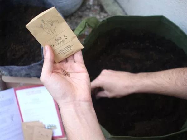 Coffret de graines Bio 100% Apéro 6 Sachets - visuel 3