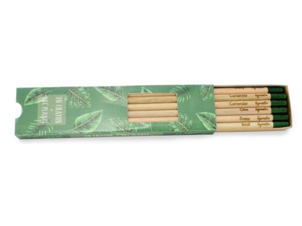 Coffret de 6 Crayons de Couleur à Graines