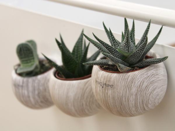 Plante Dépolluante en Pot Céramique Aimanté Aspect Bois