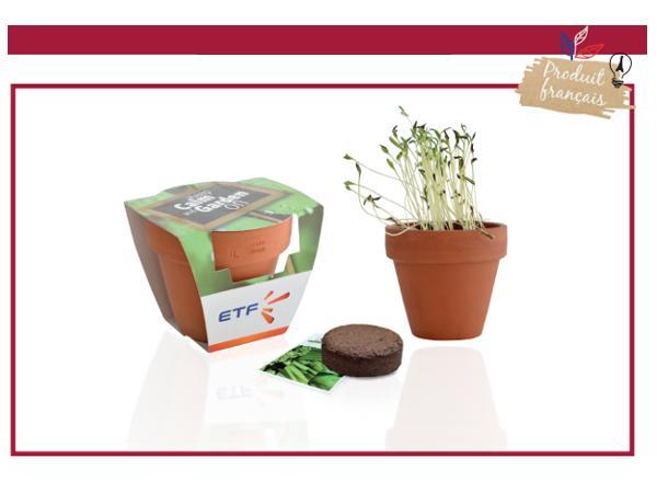 Kit de Plantation dans un Pot en Terre Cuite de 8 cm