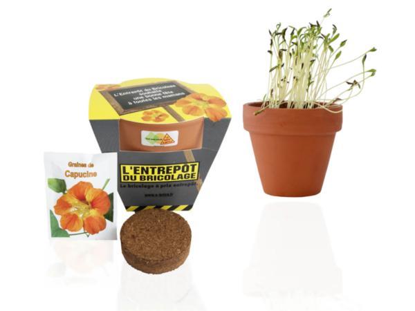 Kit de Plantation dans un Pot en Terre Cuite de 10 cm - visuel 2