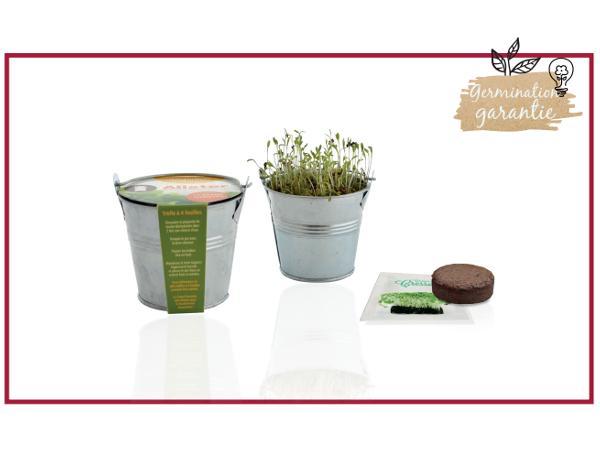 Kit de Plantation dans un Pot en Zinc de 8 cm
