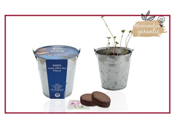 Kit de Plantation dans un Pot en Zinc de 10 cm