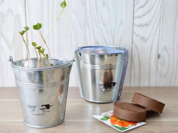 Kit de Plantation dans un Pot en Zinc de 10 cm - visuel 2