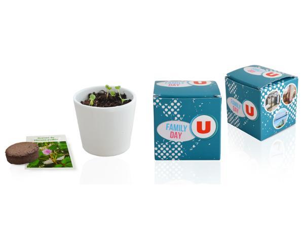 Le Cube de Plantation 7 cm - visuel 2