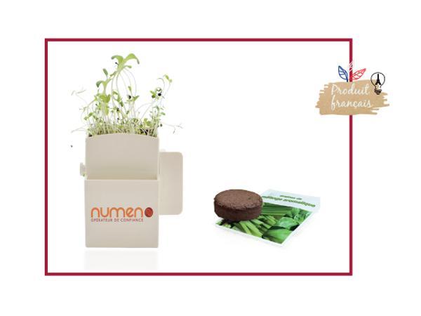 La Végétale Box Kit Graines