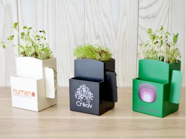 La Végétale Box Kit Graines - visuel 2