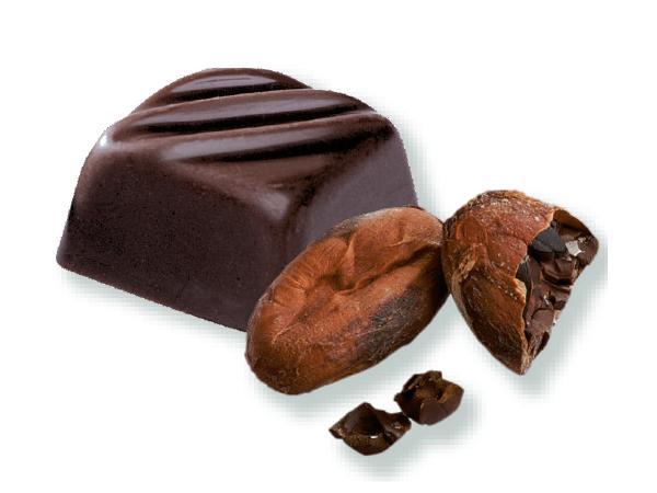 Les Classiques Chocolat Noir Praliné Fève de Cacao 106g - visuel 2